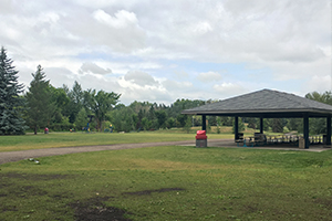 Large picnic shelter and field at Lions Park