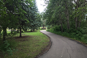 Trail path in Lions Park